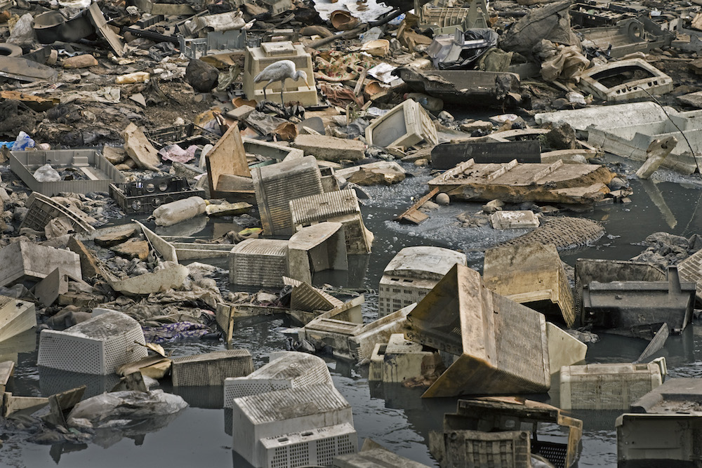 Egret and e-waste, Ghana