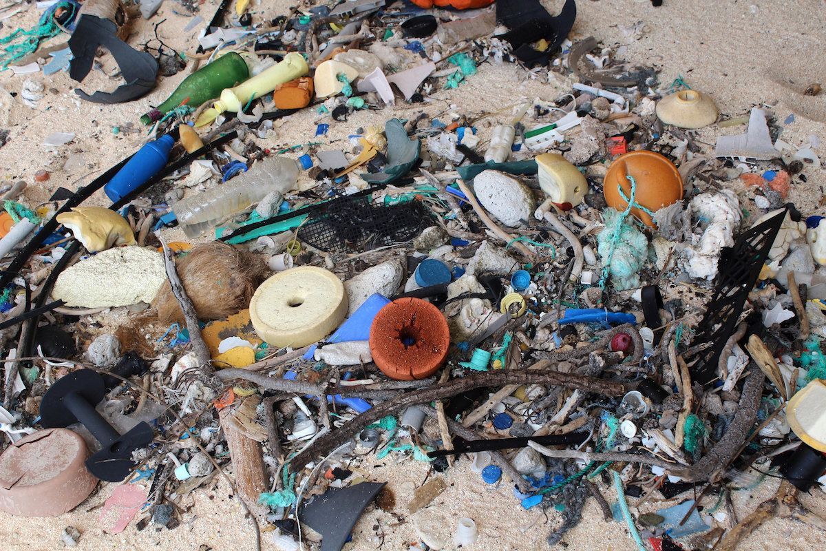 Researchers counted more than 53,100 pieces of trash, almost all of it plastic, on Henderson Island. Photo: Jennifer Lavers