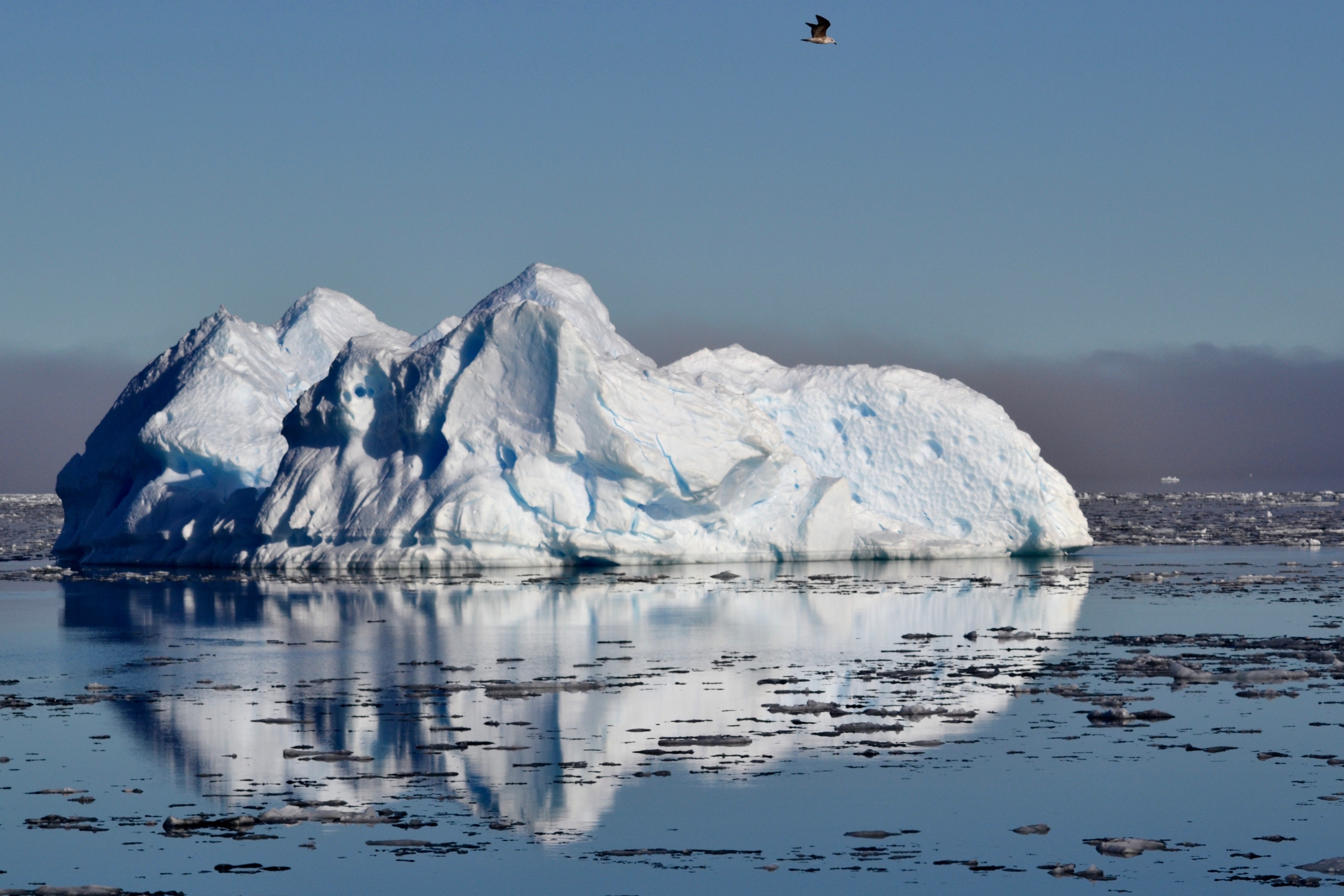 While sailing the Rio Témpanos, hundreds of ice pieces announced our arrival to the glacier.