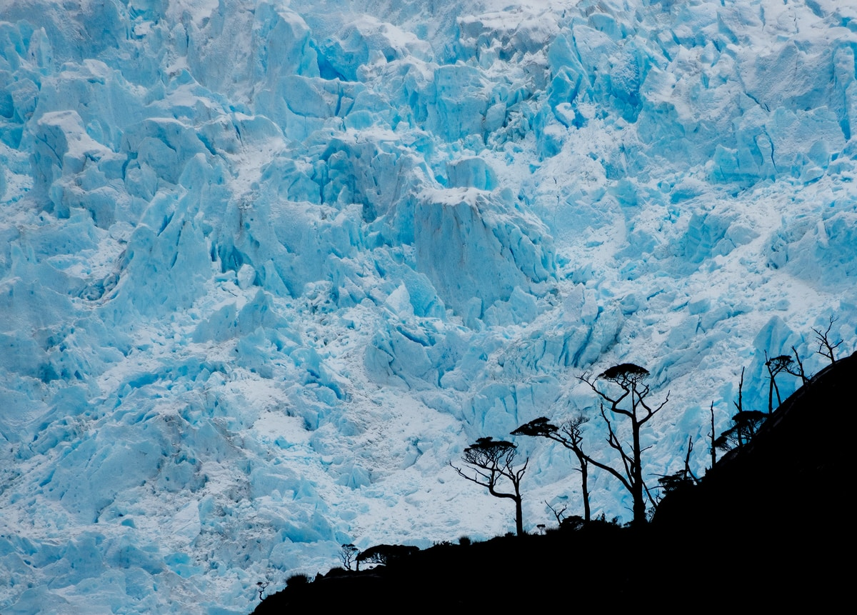 Glacier in Ballena Bay, Francisco Coloane Marine Park, Magallanes Region.