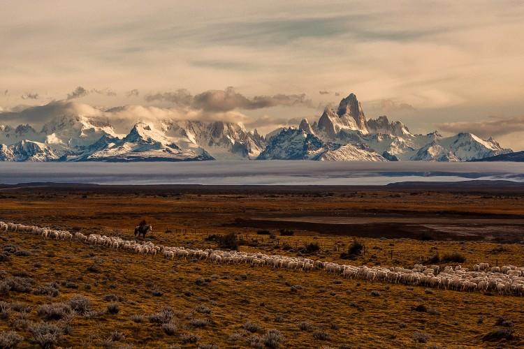 Ganador Absoluto y primer lugar categoría Viajes & Cultura: Preparando la invernada, El Chaltén, Argentina. (Angel Adaro)
