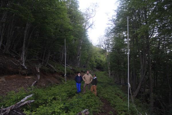 Capturando murciélagos con redes de canopia en los antiguos caminos forestales del Parque Karukinka. Foto: The Trackers